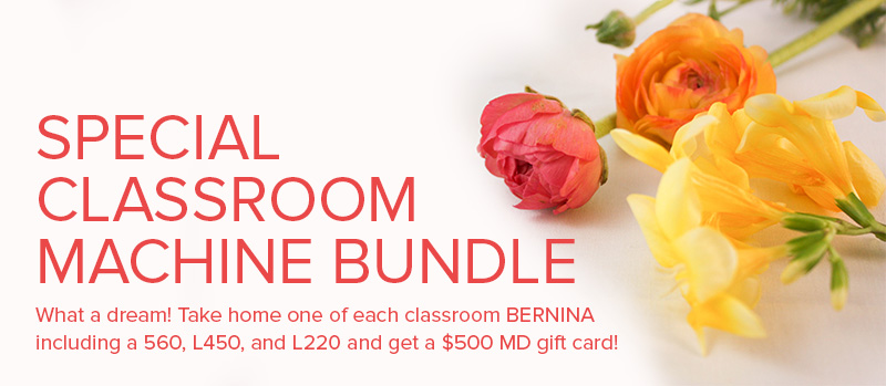 bernina classroom bundle at Modern Domestic