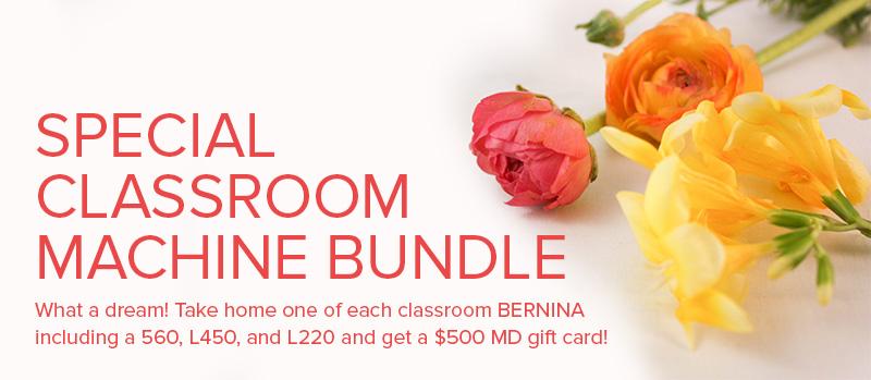 bernina classroom bundle at Modern Domestic